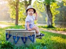Baby auf der Natur sitzt einen Korb Stockbilder