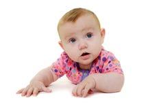 Baby auf weißem Hintergrund Stockfotografie