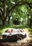 Baby auf Weinlesekoffer Stockbilder