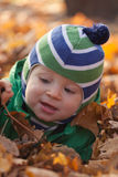 Baby in autumn. Cute little boy playing with autumn leaves Royalty Free Stock Photo