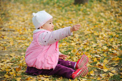 Baby in autumn Stock Photography