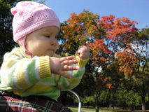 Baby in autumn stock image
