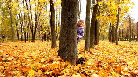 Baby in autumn forest. The child looks out of the trees in the autumn forest stock video