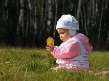 Baby with autumn leaf. Sit on grass royalty free stock photos