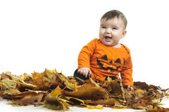 Baby autumn leaf. A baby in autumn leaf Royalty Free Stock Image