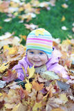 Baby in autumn leaves. A baby sitting in a pile of yellow autumn leaves Royalty Free Stock Photography