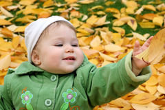 Baby in autumn leaves Royalty Free Stock Photo