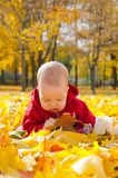 Baby in autumn leaves Stock Images