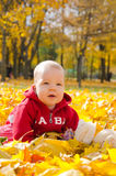 Baby in autumn leaves. Little baby in yellow autumn leaves Royalty Free Stock Image