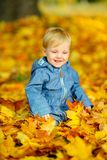 Baby in the autumn park. Happy kid playing sitting in beautiful fallen leaves Royalty Free Stock Photography