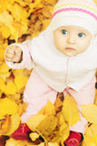 Baby at autumn park with yellow leaves background stock images