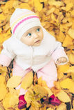 Baby at autumn park with yellow leaves background royalty free stock images