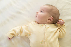 Baby in a baby bed Royalty Free Stock Photo