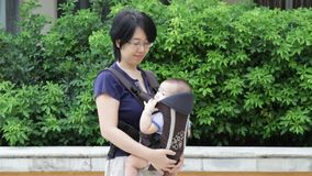 Baby in baby carrier stock video