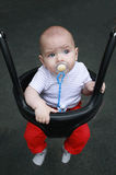 A baby in a baby swing Stock Images