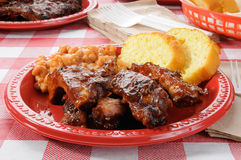 Baby back ribs on a picnic table Stock Photography