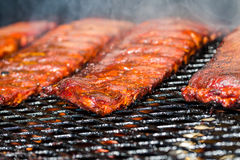 Baby back ribs Royalty Free Stock Image