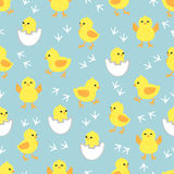 Baby background with cute little chickens. Seamless pattern with yellow chicks in different poses. Vector illustration vector illustration