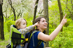 Baby in Backpack stock photography