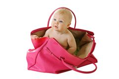 Baby in a bag Stock Image