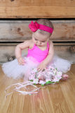 Baby ballerina. Wearing a white tutu and pink bodysuit Stock Photography