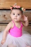 Baby ballerina. Wearing a white tutu and pink bodysuit Stock Photos