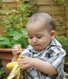 Baby and banana Royalty Free Stock Image