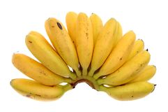 Baby banana bunch Royalty Free Stock Image
