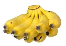 Baby banana Stock Photo