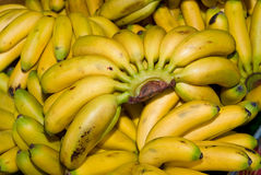 Baby bananas Royalty Free Stock Photo