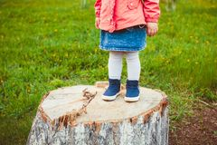 Baby foot on a stump Stock Images