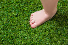 Baby bare leg standing  on green grass Royalty Free Stock Photography