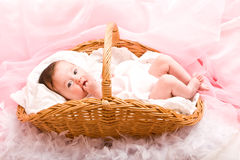 Baby in the basket Royalty Free Stock Photos