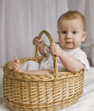 Baby in basket. About six months old infant in basket Stock Photography
