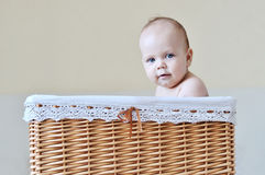 Baby in a basket Royalty Free Stock Photos