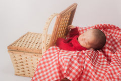 Baby in Basket stock photo