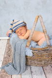Baby in basket. Adorable seven days old newborn baby boy in a wicker basket Stock Image