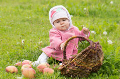 Baby with a basket of apples Stock Photography