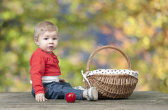 Baby with basket of apples, seated on a old wooden table Stock Image