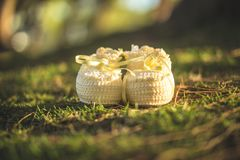 Baby, Basket, Beautiful Royalty Free Stock Photo