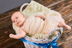 Baby in basket with bow. Infant boy wrapped in blanket. The gift of new life Stock Photos