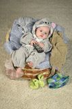 Baby  in the basket Royalty Free Stock Photo