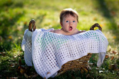 The baby in a basket Royalty Free Stock Images