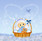 Baby in the basket Royalty Free Stock Photography
