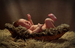 Baby in a Basket Kicking Stock Photography
