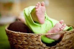 Baby in a basket small feet. Wicker basket newborn baby in a basket. Baby feet . Stock Photos