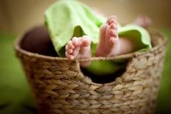 Baby in a basket small feet. Wicker basket newborn baby in a basket. Baby feet . Stock Photography