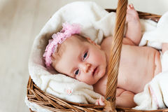 Baby in a basket. Stock Photos