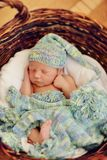 Baby in a basket Stock Image