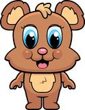 Baby Bear Stock Images